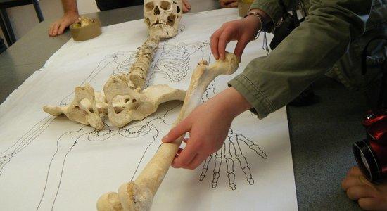 Quand l'archéologie fait parler les squelettes