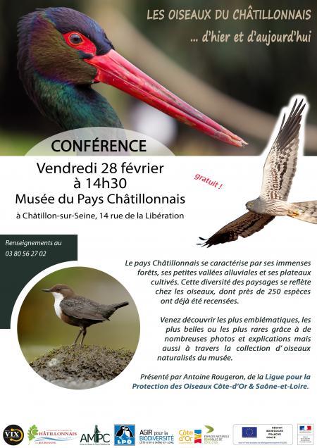 Conférence Oiseaux du Châtillonnais